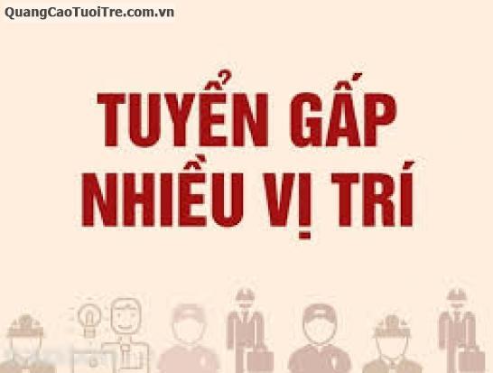 Công ty CP TM XNK Tấn Phong thông báo tuyển dụng, Q.Tân Phú