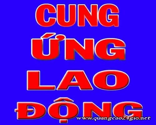 Công ty TNHH Cung ứng việc làm Tân Bình