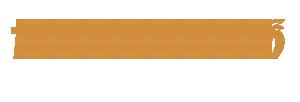 thegioivogo.com chuyên cung cấp điện thoại vỏ gỗ